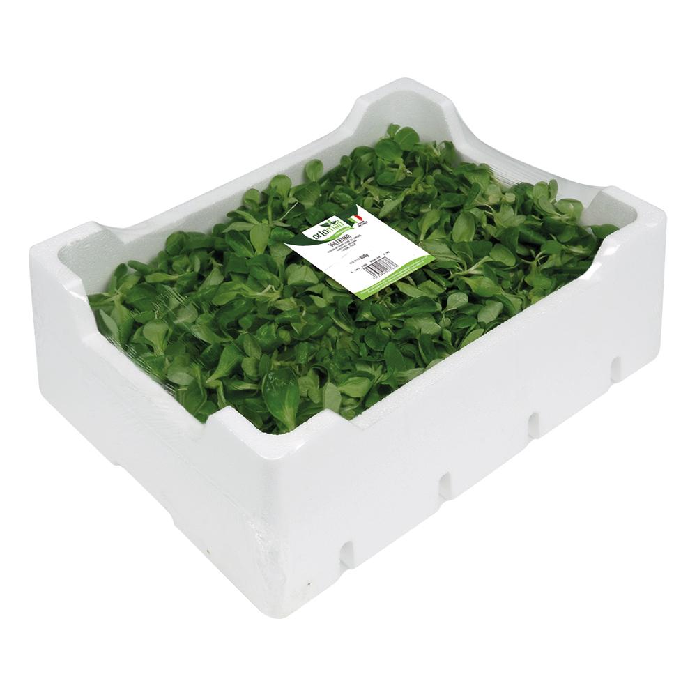 Lamb's Lettuce <br> 500/800/1000g